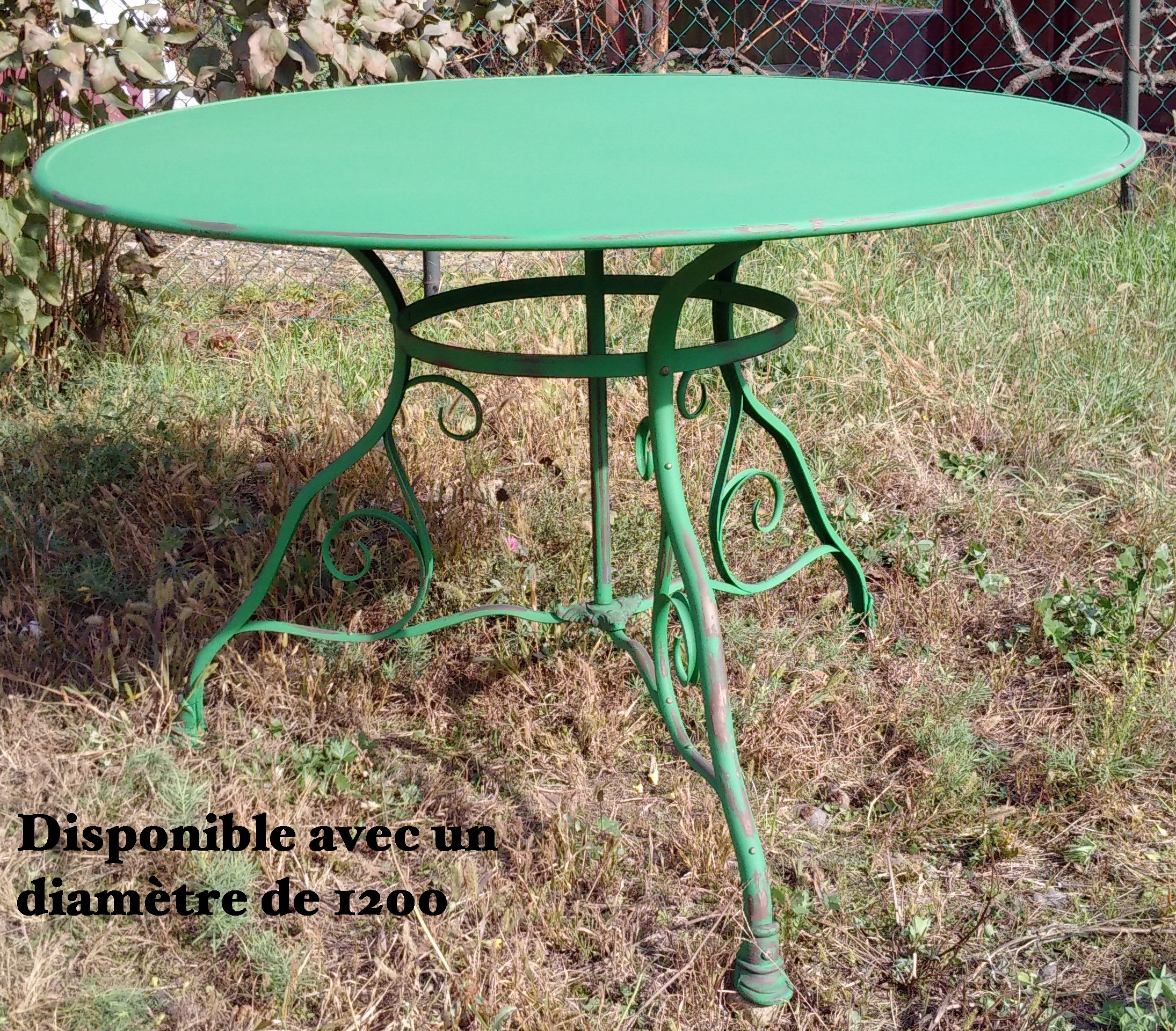 T100 - Table de jardin